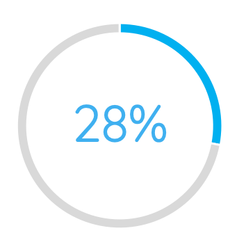 twety eight percent